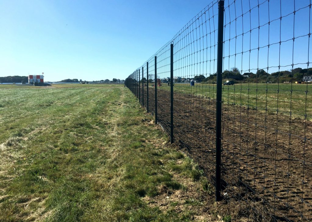 Chainlink fence running through grassy area with blue skies in background